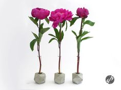"""Pompös Grau"" Blumenvase von Glänzend Grau auf DaWanda.com http://de.dawanda.com/product/48346302-Pompoes-Grau-Blumenvase"