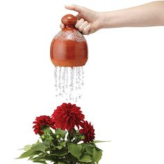 Thumb Waterer   Watering Can   UncommonGoods