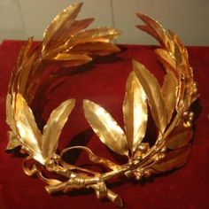 Coipe de la couronne de lauriers de Napoléon. The laurel wreath symbolizes the imperator (the ancient sense = the victorious general). Napoleon is a warlord recognized and respected by his men. He wants to show itself as the military leader of the whole empire, the absolute ruler whose authority comes from his victories.