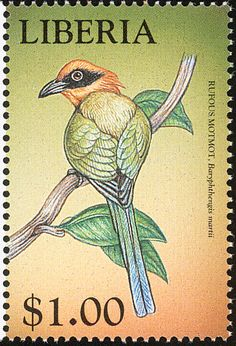 Rufous Motmot stamps - mainly images - gallery format