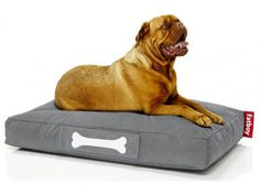 Discover Fatboy Doggielounge Dog beds: Dog pillow or dog bed, whatever you call it this dirt and water repellant lounger creates a perfect pooch pillow >> Small Chair For Bedroom, Accent Chairs For Living Room, Wooden Dining Room Chairs, Fabric Dining Chairs, Relaxed Dog, Office Waiting Room Chairs, Soft Chair, Types Of Beds, Animaux