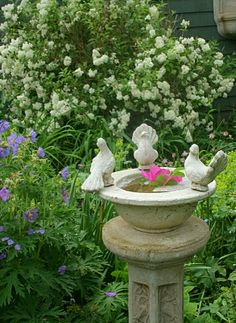 Very pretty garden with bird bath.love the bird bath! Bird Bath Garden, Love Garden, Dream Garden, Garden Art, Garden Design, Home And Garden, Garden Whimsy, Beautiful Gardens, Beautiful Flowers