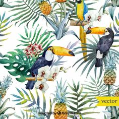 Acuarela aves y plantas tropicales