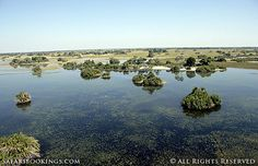 Aerial view of the delta (Okavango Delta, Botswana) - Botswana travel guide: http://www.safaribookings.com/botswana