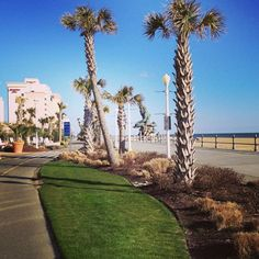 The Board Walk in Virginia Beach