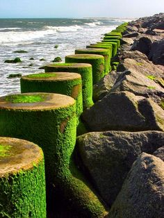 sea wall @ fort fisher by fubuki, via Flickr