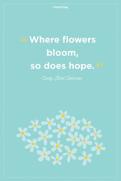 Lady Bird Johnson countryliving Pretty Quotes, Amazing Quotes, Blue Color Quotes, Flower Quotes Inspirational, Smelling Flowers, Bird Quotes, Morning Love Quotes, Plants Quotes, Living At Home