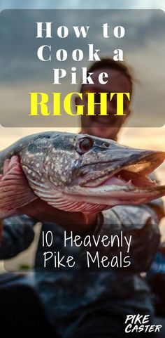 10 Super Simple & Healthy Pike Recipes How to Cook a Pike the Right Way. 10 Heavenly Northern Pike Recipes for Beginners and Pros. Make your pike fish recipes super tasty. Simple and Healthy Pike Recipes for the oven, on the stove, and on the grill Pike Fishing, Crappie Fishing, Carp Fishing, Best Fishing, Fishing Tips, Fishing Poles, Fishing Knots, Fishing Table, Fishing Videos