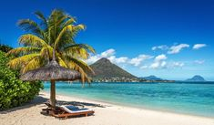 Finding interesting places to visit in Mauritius is not too much of a challenge - especially once you know where to go. For first time visitors to Mauritius, it is not always easy to know which attractions are worth visiting. Best Destination Wedding Locations, Popular Honeymoon Destinations, Destination Voyage, Holiday Destinations, Amazing Destinations, Mauritius Travel, Mauritius Island, Mauritius Hotels, Mauritius