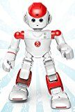 nice Alpha 2, the First Humanoid Robotic for the Household