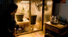 Uruguay Considers Legalizing Marijuana to Stop Traffickers - NYTimes.com