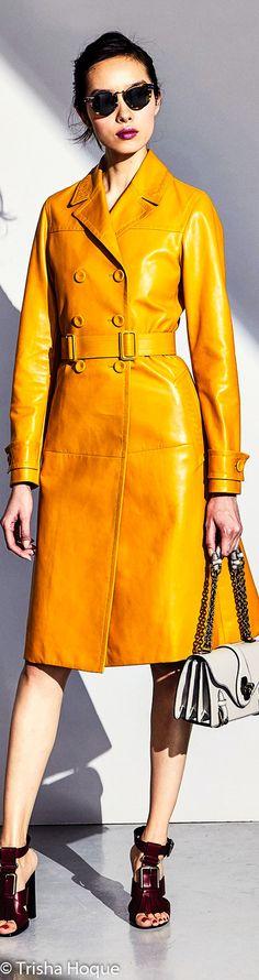 Bottega-Veneta-Pre-fall-2017-Outfit-14.jpg