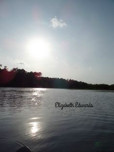 Little Pee Dee State Park, South Carolina - took this shot while out kayaking. ( ;