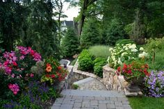 arrangements de fleurs de jardin - hortensias blancs,rosiers et pétunias