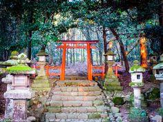 Things to do in Nara - Mount Wakakusayama