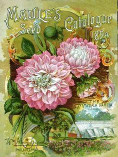 vintage garden packet