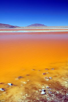 Laguna Colorada (Red Lagoon), Bolivia #travel #bucketlist #yyc | http://www.stampedetoyota.com