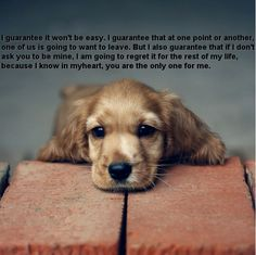 Cute puppy.....great quote Virginia Satir