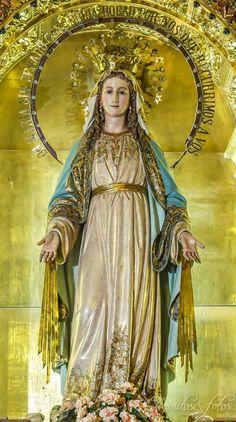 A ti celestial Princesa  Dulce Virgen María te ofrezco en este día alma , vida y corazón.  Mírame Madre mía se mi amparo y protección , pues todo un Dios se recrea en tan Graciosa belleza . Amén .