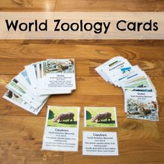 Set of 5-part, Montessori-style cards featuring 28 animals from around the world (4 animals from each of the 7 continents). Kids can learn interesting facts about each animal such as their diet and conservation status, as well as  some geography when combined with a world map.
