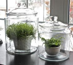 I love glass jars!