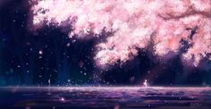 134 Your Lie In April HD Wallpapers   Backgrounds - Wallpaper Abyss