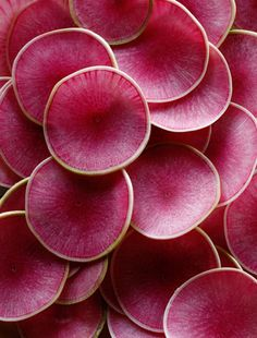 61 Ideas for nature texture design color inspiration Patterns In Nature, Textures Patterns, Color Patterns, Nature Pattern, Natural Forms, Natural Texture, Pink Texture, Watermelon Radish, Watermelon Slices