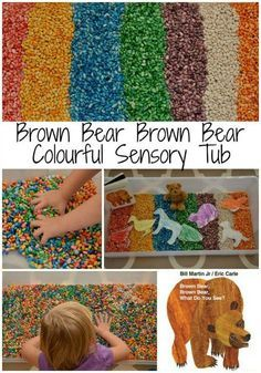 A fun sensory bin inspired by the book, Brown Bear, Brown Bear What Do You See?