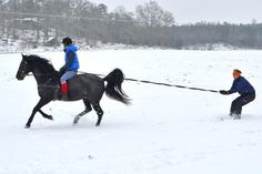 Fun in the snow with Black Pepper.