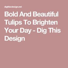 Bold And Beautiful Tulips To Brighten Your Day - Dig This Design