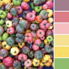 Color Palette {55}  color palettes inspired in the colors found in produce markets around the world.  #color #inspiration #ideas