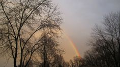 Try to be a rainbow in someone's cloud.  ― Maya Angelou