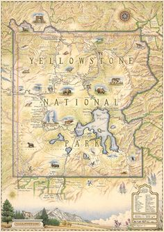 Xplorer Maps Yellowstone National Park Poster - Authentic Hand Drawn Map of Yellowstone Map Art - Lithographic Fine-Art Print Yellowstone Nationalpark, Yellowstone Vacation, Yellowstone Camping, National Parks Map, National Park Posters, Grand Teton National Park, Paraiso Natural, Glacier Park, Map Art