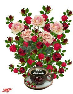 Australian Men, Good Morning, Coffee, Night, Baby Animals, Good Morning Greetings, Be Nice, Queen, Flowers