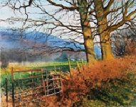 Joe Dowden - Sunlight on Gate Watercolour Tutorial