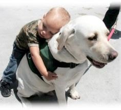 Animal Therapy for Autism | Hear Our Voices Blog on Everything Autism #therapy #autism
