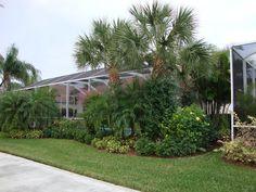 good plants for florida pool cage Landscaping Around Pool, Florida Landscaping, Florida Gardening, Home Landscaping, Tropical Landscaping, Landscaping With Rocks, Tropical Backyard, Fun Backyard, Backyard Pools