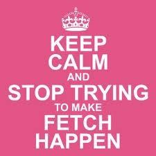 Stop trying to make fetch happen!