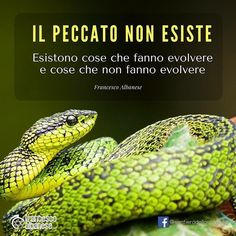#infinitemandala #crescitapersonale #peccato