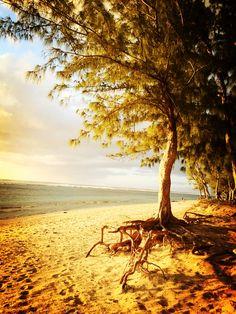 Coucher de soleil  Ile de la Reunion