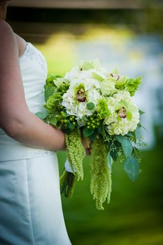 1000 images about bells of ireland wedding flowers on pinterest ireland le 39 veon bell and. Black Bedroom Furniture Sets. Home Design Ideas