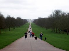 Track to Windsor Castle after Olympics reopened to casual runners; marathoners returned to their home countries.
