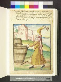 Amb. 317b.2° Folio 31 recto