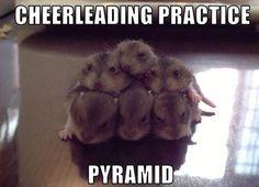 Cheereading!