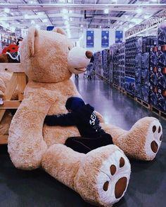 ~ ღ Skuwandi Huge Teddy Bears, Giant Teddy Bear, Cute Couple Poses, Cute Couples, Costco Bear, Teady Bear, Teddy Girl, Teddy Bear Pictures, Bear Girl