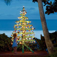 Another reason to love Jack Johnson.  Check out this awesome tree he made out of wood that washed ashore after a storm.  Many of the ornaments are made  of beach glass and other things found on the beach. I would love to see this tree in person! LOVE!!