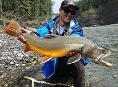 Awesome bull trout from @roll_caster Nice one dude!  #bulltrout #trout #fishing #alberta #flyfishing - Book your next fishing trip on Amberjack.com today.