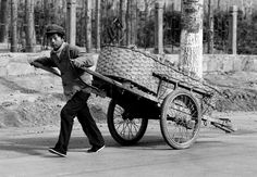 The two wheel transport