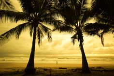 Playa Cocles, Costa Rica. I spotted the lady walking down the beach while I was doing a long-exposure shot. I quickly adjusted the camera settings and waited til she was precisely in between the two trees. Although very small I think she adds a lot to the composition.