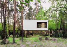 Mirrored modern home appears to vanish into the Polish forest